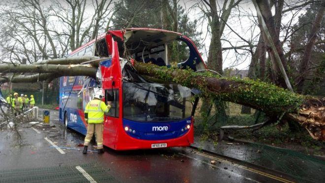 Majdnem kettészakított egy emeletes buszt egy kidőlt fa Dél-Angliában a hatalmas viharban 11