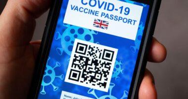 Kiszivárgott egy jelentés az oltási útlevelekről Angliában 5
