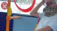 Élő kígyót használt szájmaszknak egy férfi a buszon Angliában 2
