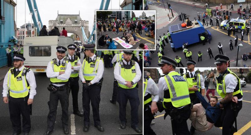 Tüntetők miatt állt le teljesen a forgalom a híres londoni Tower Bridge-nél 3