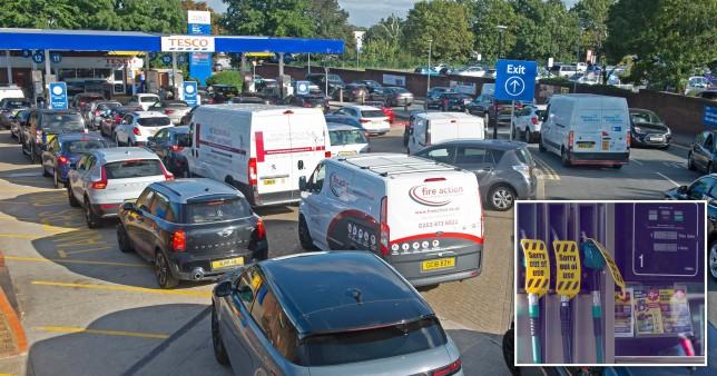 pánikvásárlás üzemanyag benzin
