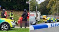 Két tinédzser lányba kocsival hajtottak bele, egy férfit pedig a parkban játszó gyerekek mellett lőttek le Angliában 2