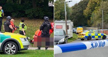 Két tinédzser lányba kocsival hajtottak bele, egy férfit pedig a parkban játszó gyerekek mellett lőttek le Angliában 5