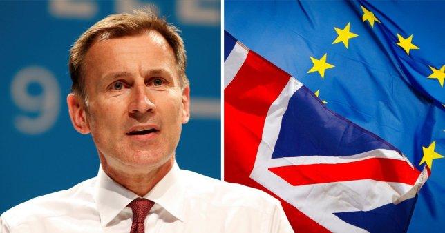 """Teljesen beszüntetné a Brexit tárgyalásokat és hagyná """"kiesni"""" a briteket az EU-ból Jeremy Hunt 1"""