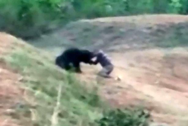 A helyszínen meghalt egy férfi, aki egy medvével próbált közös szelfit csinálni 2