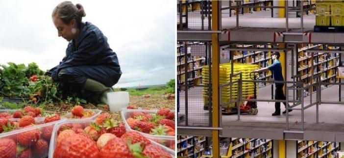 Hol dolgoznak az Angliába kijött EU bevándorlók 2018-ban 1
