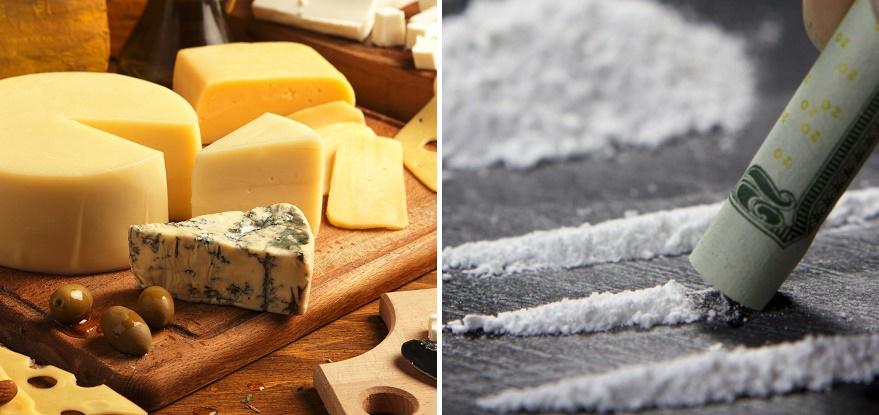 A sajt ugyanazt a részét stimulálja az agynak, mint a kemény drogok 14