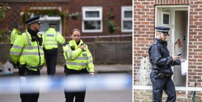 Egy 1 éves kisbabát és édesanyját késeltek meg Londonban 2