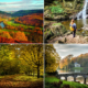 A leggyönyörűbb őszi kirándulóhelyek, parkok és erdős területek Nagy-Britanniában 9