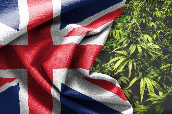 Óriási előrelépés: Nagy-Britanniában receptre kapható lesz az orvosi marihuána 2